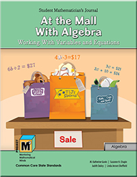 M3_Levels_4-5_At_Mall_With_Algebra