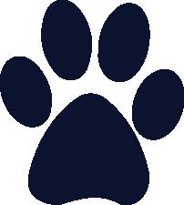 Husky Dog Paw